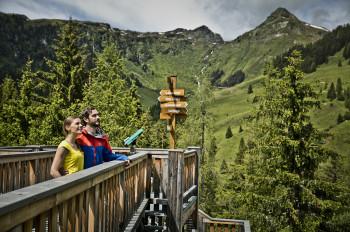 Der Baumzipfelpfad in Saalbach Hinterglemm ist der höchstgelegene Wipfelwanderweg Europas.