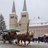 Die Pferdekuschte befördert Gäste kostenlos