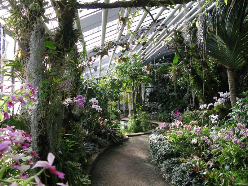 Botanischer Garten Karlsruhe Ausflugsziele Karlsruhe