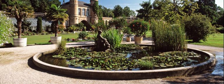 Der Botanische Garten wird von der Orangerie, den Schauhäusern und der eindrucksvollen Eisenkonstruktion des des ehemaligen Wintergartens umrahmt.