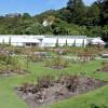Teil des Botanischen Garten Wellington