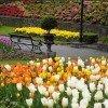 Der botanische Garten im Frühjahr.