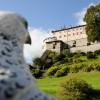 Die Festung beherbergt das einzige Falknereimuseum Österreichs.