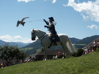 Die Falkenshow auf der großen Lindenwiese gilt als Highlight bei einem Besuch der Erlebnisburg Hohenwerfen.