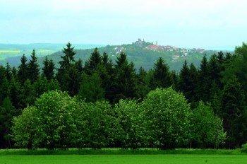 Burg Leuchtenberg vom Goldsteig aus