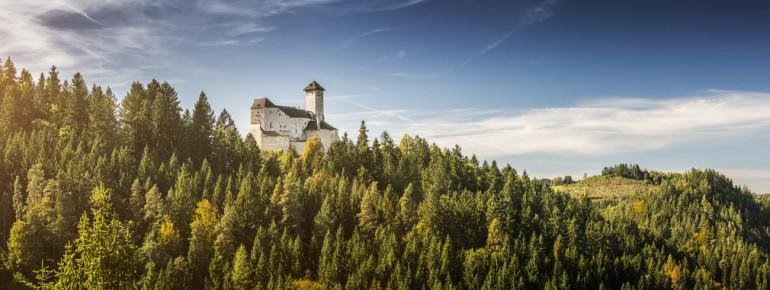 Burg Rappottensteinzum Reiseplaner hinzufügenDreimal belagert, aber nie zerstört – ein altes Wahrzeichen erzählt Geschichte.Im Tal des kleinen Kamp präsentiert sich eine der ältesten Burgen des nordwestlichen Waldviertels stilvoll und stolz auf einem Granitfelsberg.