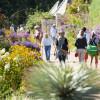 Zahlreiche Besucher bestaunen die präsentierten Pflanzenwelten.