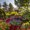 Neben dem Romantic Gardens, Lilac Garden, und dem Victorian Secret Garden gibt es zahlreiche weitere liebevoll angelegte Gärten in York Street zu erkunden.