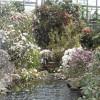 Zahlreiche Pflanzenarten, ein echter Wasserfall, all das beherbergt die Botanika