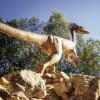 Über 70 lebensgroße Dinosaurier Nachbildungen werden in dem Museum ausgestellt.