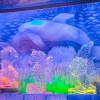 Mit farbigen Lichtakzenten werden die Eisskulpturen kunstvoll in Szene gesetzt.