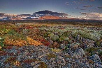 Blick über den herbstlichen Thingvellir Nationalpark