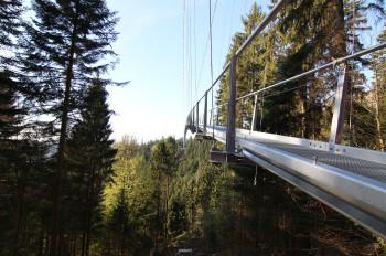 Am höchsten Punkt hängt die Brücke 60 Meter über dem Grund.