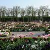 Der fürstliche Blumengarten im Frühling