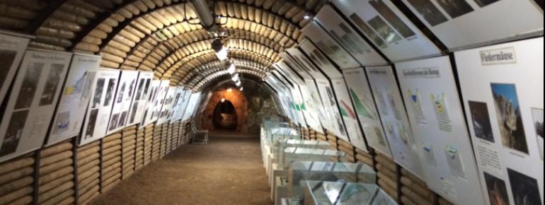 Im Tunnelbereich vor der Höhle ist ein Museum eingerichtet