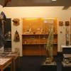 Phallen in allen Formen und Größen sind im Museum ausgestellt.