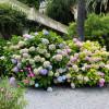 Kaum zu glauben, aber auf der Isola del Garda arbeiten lediglich zwei Gärtner. Die Hausherrin selbst kümmert sich leidenschaftlich um die Gartenanlage.