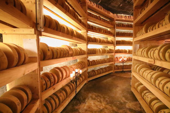 In der Käsegrotte lagern mehr als 3000 Käselaibe.