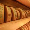 Die Käselaibe sind auf mehreren Etagen platziert und raffiniert beleuchtet.