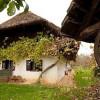 Das Daxhaus