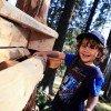 Der Kugelwald am Glungezer ist ein tolles Ausflugsziel für die ganze Familie.