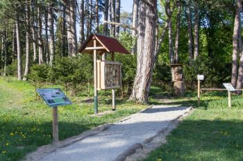 Die Informationstafeln an den Lehrpfaden geben viele Tipps und informieren über die Natur.