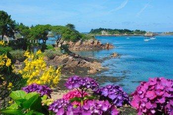 Die Île de Bréhat trägt zu Recht den Beinamen Blumeninsel.