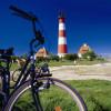 Zu Fuß oder mit dem Fahrrad geht es durch die Salzwiesen vor dem Deich.