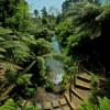 Der Dschungelgarten ist freier gestaltet als die viktorianschen Gärten.