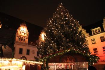 Der Meißner Weihnachtsbaum erstrahlt mit seinen Lichterketten in festlicher Pracht.
