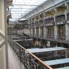 Die großartige Galerie des Natural History Museums