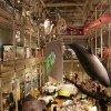 Das Museum ist ein Erlebnis der Extraklasse!