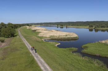 Über die vielen Radwege kannst du den Nationalpark Unteres Odertal auf deinem Fahrrad erkunden.