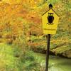Im Nationalpark darf sich die Natur frei entfalten und sich nach eigenen Gesetzen entwickeln.