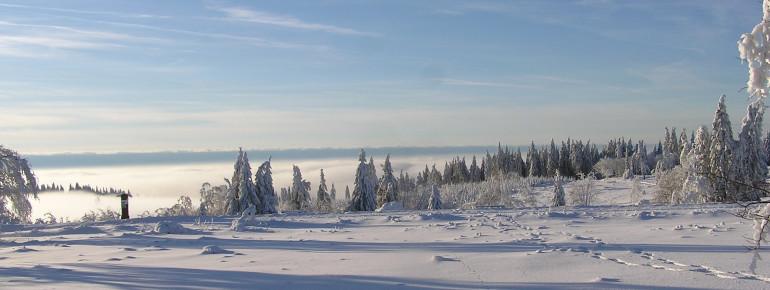 Blick über die Hochheide im Winter