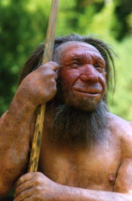 Neanderthaler Mr. N