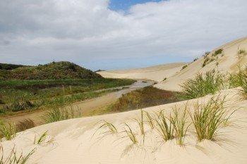 Im nördlichen Bereich gibt es zahlreiche Dünen.