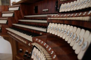 Musikliebhaber werden von den historischen Instrumenten begeistert sein