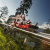 Kinder ab acht Jahren dürfen ohne Erwachsene auf dem Osttirodler fahren.