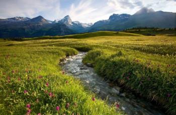 Die Moorlandschaft Alp Flix ist eines der Naturhighlights im Parc Ela