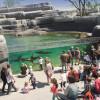 Der Zoo wurde 2014 nach einer kompletten Renovierung wiedereröffnet.