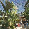 Das große Tropenhaus führt durch zwei Biozonen.