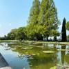 18 Wasserflächen im Park beherbergen zahlreiche Seerosenarten.
