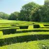 Ab durchs Labyrinth! Wer findet als erster den Ausgang?