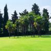 Palmen inmitten perfekt getrimmter Grünflächen