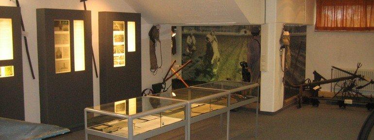 Anbau, Ernte und Trocknung stehen im Fokus der Ausstellung.