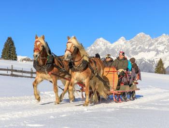 Dir stehen verschiedene Pferdeschlittenfahrten zur Auswahl.
