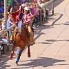 Auf dem Programm stehen verschiedene Pferdeshows