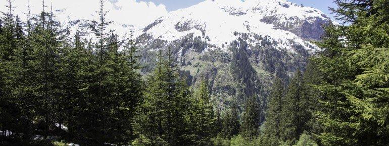 Rauriser UrQuell mit Bergblick