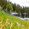 Im Seilpark am Pradaschier in Churwalden können Kinder ab 10 Jahren ihre Geschicklichkeit testen.